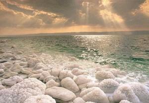 salt of earth2