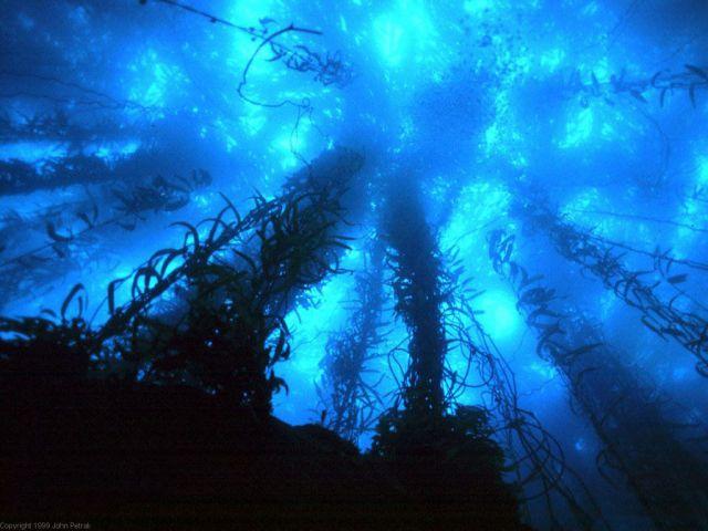 deep water4