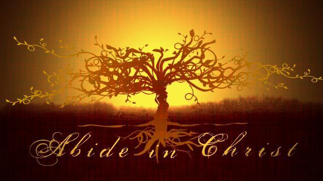 abide-tree